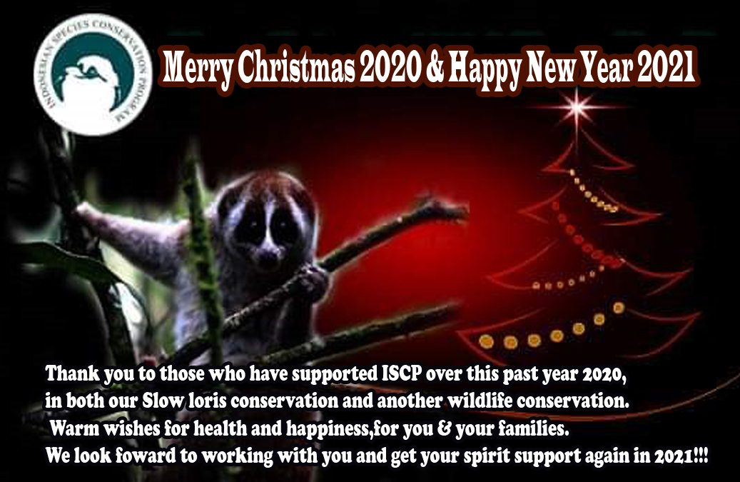 Selamat Tahun Baru 2021, Harapan Baru Untuk Satwa Liar & Alam Kita